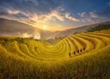 Kinh nghiệm du lịch Hà Giang mùa lúa chín năm 2020