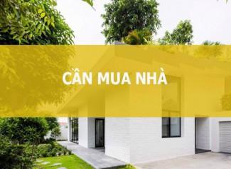 Website mua bán bất động sản Phú Thọ
