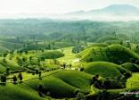 Phú Thọ với những trải nghiệm hấp dẫn du khách