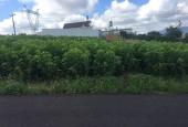 bán 550m đất vườn ngay cổng Lý Thái Tổ Bảo Lộc sổ hồng chính chủ  full thổ cư