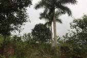 Cần chuyển nhượng 1300m đât thổ cư nghỉ dưỡng tại Yên Bàn-Ba Vì-Hà Nội