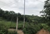 Bán gấp lô đất cam sắp đến mùa thu hoạch giá hạt rẻ - yên lập CP