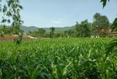 Bán đất tại xã Đông Xuân Quốc Oai Hà Nội diện tích 6200m2