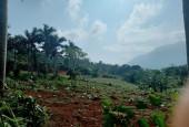 Bán đất tại xã Yên Bài Ba Vì Hà Nội diện tích 1617m2.