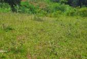 Bán đất Kim Bôi diện tích 1000m full thổ cư view cánh đồng thoáng mát