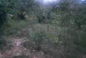 Chủ nhờ bán lô đất tại xóm lặt xã yên trung thạch thất Hà Nội