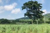 HOT!! Bán đất view cực thoáng tại Lương Sơn