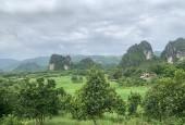 Bán đất 32000m2 tại Lương Sơn view núi đá