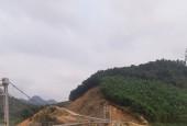 Bán đất Cao Phong, Hòa Bình 80ha rsx, bám hồ tuyệt đẹp, giá chỉ 550tr/ha