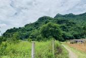 Bán 1600m full đất vườn tại Đú Sáng, Kim Bôi . 550tr
