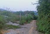 Bán 1862m đất thổ cư nhà vườn tại Yên Bình-Thạch Thất-Hà Nội.