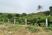 Bán đất xã Minh Quang Ba vì Hà Nội diện tich rộng 3600 m2.