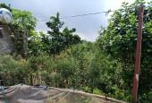 Bán đất giá rẻ tại Hòa Lạc xã Yên Bình Thạch Thất Hà Nội diện tích 528m2.