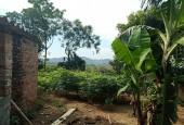 Bán đất tại Hòa Lạc xã Tiến Xuân Thạch Thất Hà Nội diện tích 500m2