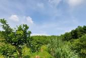 Bán đất Lương Sơn (Nhanh tay sở hữu lô Đất Nhà Vườn siêu phẩm)