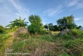 Cần bán mảnh đất đẹp thích hợp làm trang trại, khu sinh thái mini