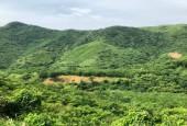 BÁN Hơn 3ha đất RSX tại xã Tiến Sơn LS HB chỉ hơn 1 tỷ.