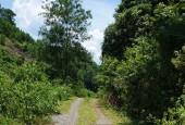 Hồ ở trong đất đất ở trên mây - Lô đất rừng sản xuất diện tích 2.4ha tại Quy Hậu Tân Lạc Hòa Bình