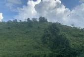 hàng hiếm có toàn bộ đất rừng sản xuất tại xã hợp phong cao phong hoà bình.diện tích 4,7 ha.130tr/ha