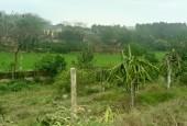 Đất sẵn khuôn viên ở cẩm lĩnh Ba Vì Hà Nội giá 950k/m