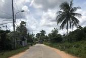 Bán Nền Mặt Tiền Cây Thông Ngoài Vị Trí Đắc Địa Tại Huyện Phú Quốc, Tỉnh Kiên Giang