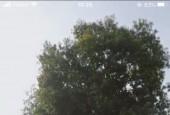 Hot hot chính chủ cần lô đất đẹp cổng A Sư đoàn 5 vị trí đắc địa tại Châu Thành, tỉnh Tây Ninh