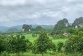 Bán đất Lương Sơn Hoà Bình có vườn cây ao cá và nhà cấp 4 đẹp xinh.