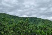 Bán đất Hòa Lạc diện tích rộng 4720m2 làm nghỉ dưỡng sinh thái