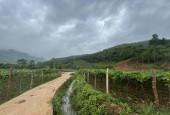 Bán 5444m2 đất Mộc Châu thích hợp làm homestay nghỉ dưỡng ,giá rẻ đón đầu sóng cao tốc