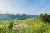 Bán đất Kim Bôi dt 3500m view paranoma toàn cảnh núi rừng với cánh đồng siêu đẹp ,giá rẻ