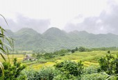 Cần bán 3500m đất thổ cư tại Kim Bôi Hòa Bình giá cực rẻ view cực phẩm
