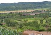 Chính Chủ Cần Bán Gấp Lô Đất Vị Trí Đẹp Tại Huyện Đăk Mil MUA VÀNG THÌ LỖ - MUA THỔ THÌ LỜI- GIÁ SIÊU RẺ
